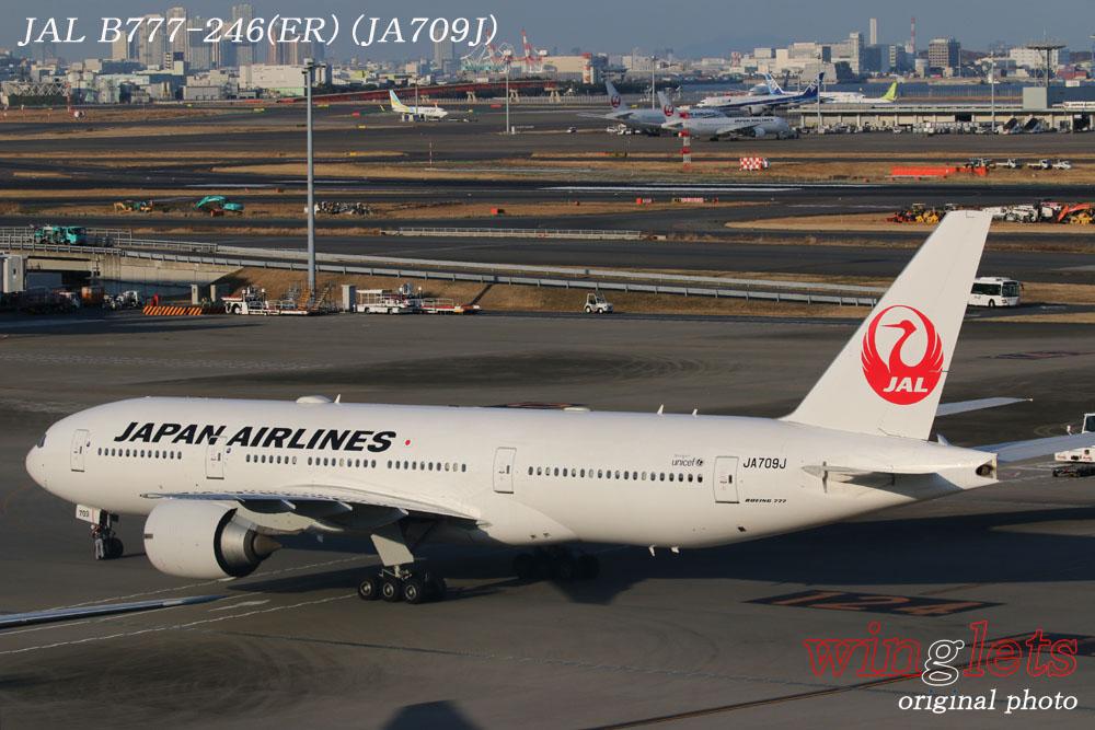 '20年 羽田空港レポート ・・・ JAL/JA709J_f0352866_2155272.jpg
