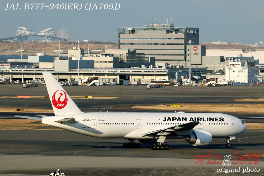 '20年 羽田空港レポート ・・・ JAL/JA709J_f0352866_21553726.jpg