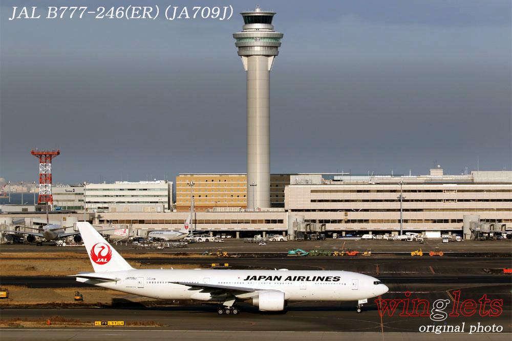 '20年 羽田空港レポート ・・・ JAL/JA709J_f0352866_21554520.jpg