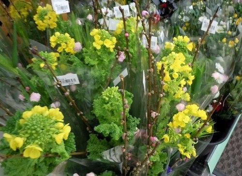 春の味覚は今年も不漁とか ・・・_b0102572_16420172.jpg