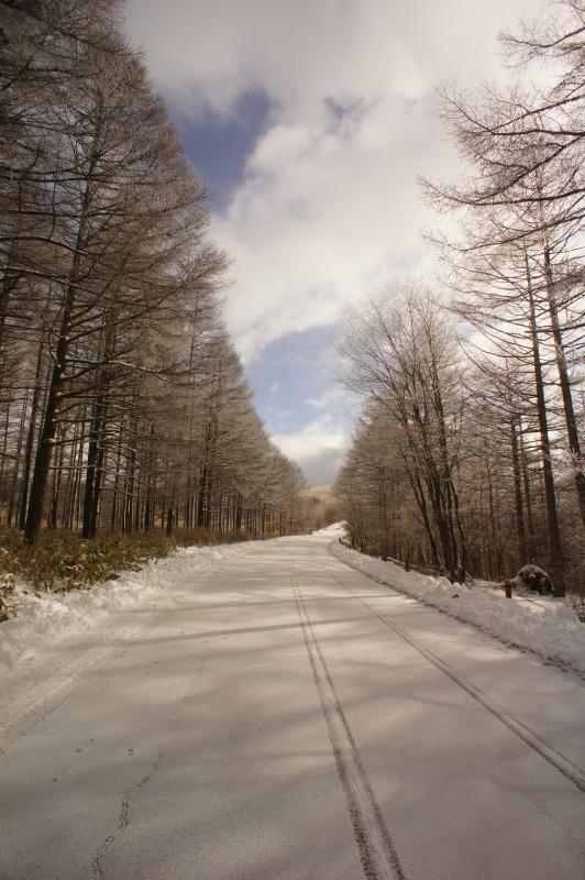 2月27日 積雪少し戻りました。_f0235376_23121861.jpg