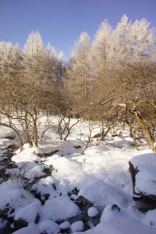 2月27日 積雪少し戻りました。_f0235376_23160985.jpg