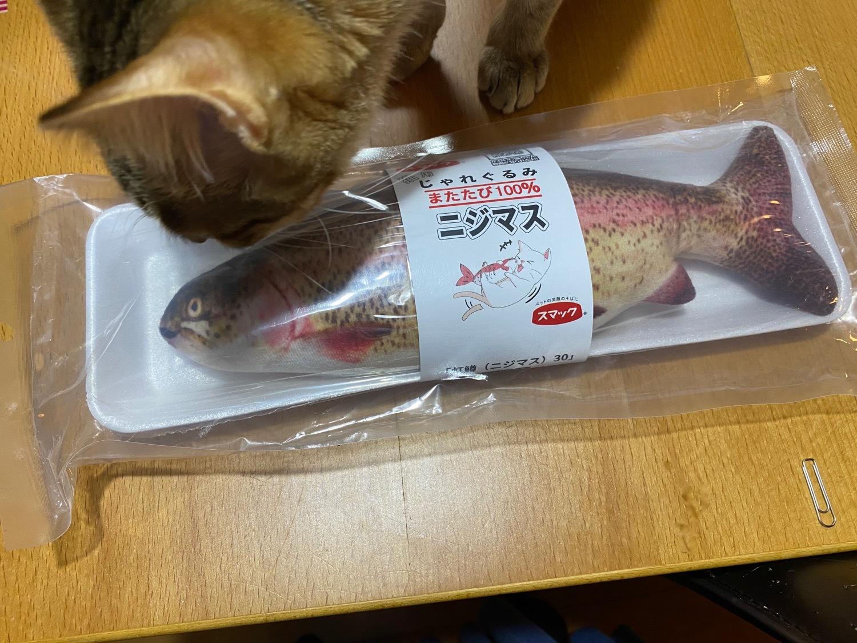 猫ネタばかりでスミマセン…。_f0232994_10101051.jpg