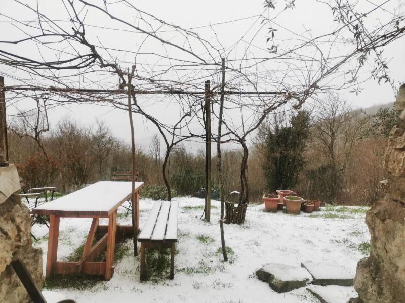 雪が降りました_f0106597_20344954.jpg