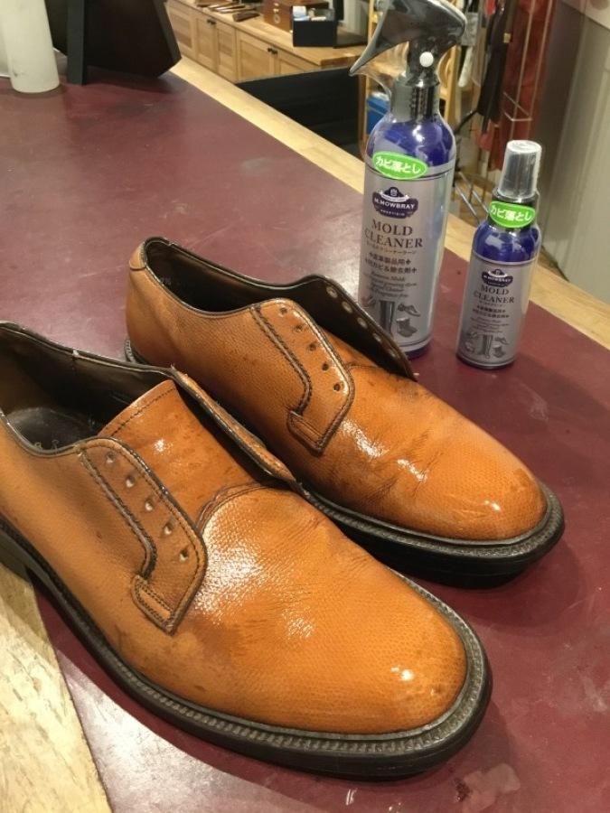 ヴィンテージ靴の強い味方、「モールドクリーナー」_f0283816_14413770.jpg