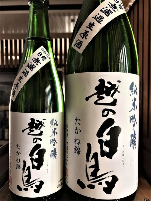 【日本酒】越の白鳥『仕込み8号』純米吟醸 無濾過生原酒 たかね錦55磨き 特別限定蔵出し 令和1BY🆕_e0173738_12304243.jpg