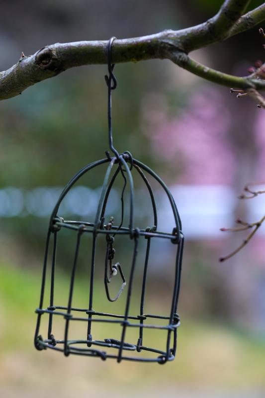 桜のシナモンロール_d0034447_12321190.jpg