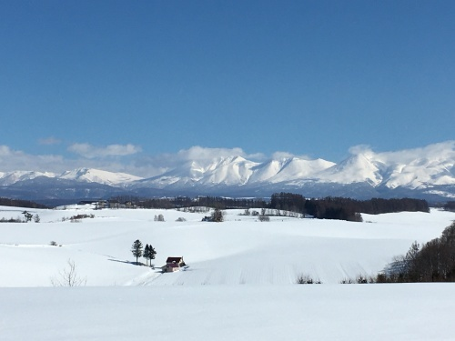 京都から雪残る美瑛へ_e0326953_14483635.jpg