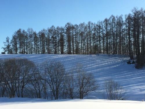 京都から雪残る美瑛へ_e0326953_14500940.jpg