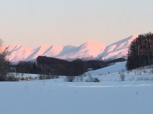 京都から雪残る美瑛へ_e0326953_15035319.jpg