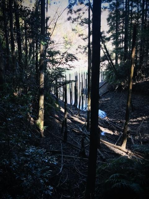 【200228:金】+++海上の森、一人散歩アゲイン+++_f0327767_15023898.jpg
