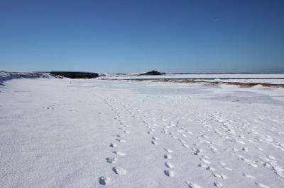 冬こそウォーキング_c0353373_23435253.jpg