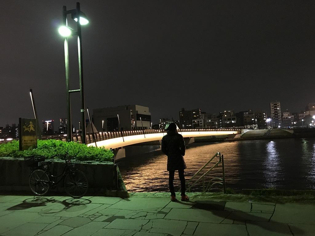 【スカイツリーのよく見える桜橋を渡り浅草へ 2/26】新コロ外出自粛がなんだ、空いてる都心が見たい!浅草泊まり掛け 4_d0061678_15051196.jpg