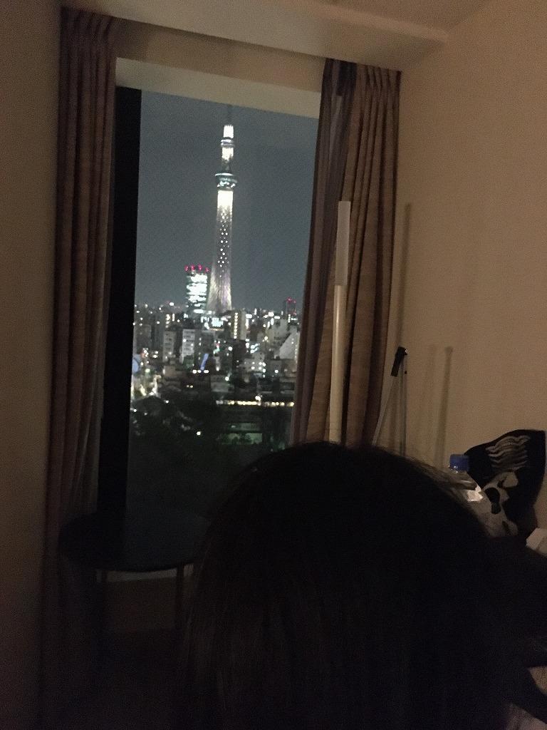 【リッチモンドホテル浅草 スカイツリーが目の前ドーン~空いている浅草寺を見て上野へ 2/27】新コロ外出自粛がなんだ、空いてる都心が見たい!浅草泊まり掛け 7_d0061678_16291991.jpg