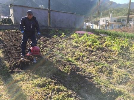 2月28日(金)曇。畑作り。_c0089831_08031706.jpeg