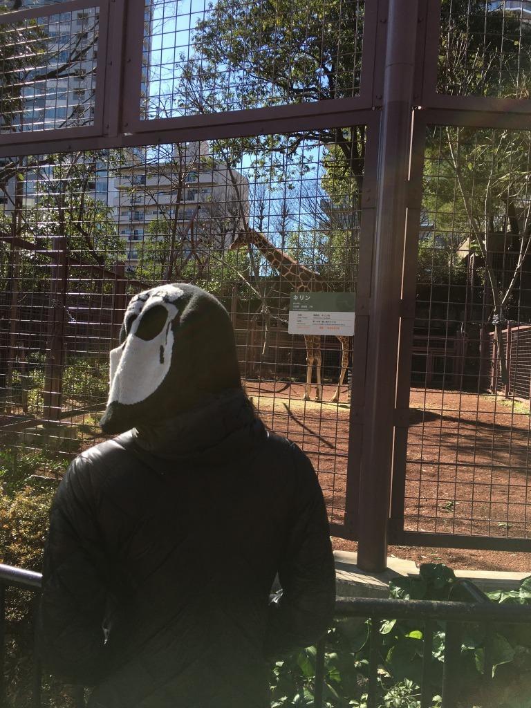 【上野動物園 2/27】新コロ外出自粛がなんだ、空いてる都心が見たい!浅草泊まり掛け 8_d0061678_12314794.jpg