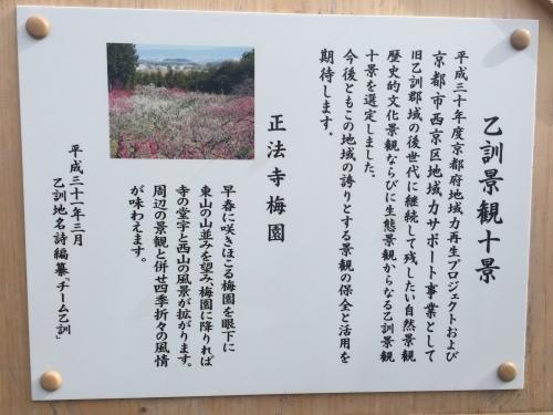 梅の花_c0184989_22091832.jpeg