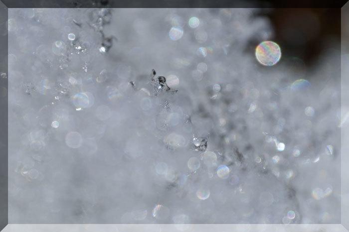 氷の模様_d0162994_08232271.jpg
