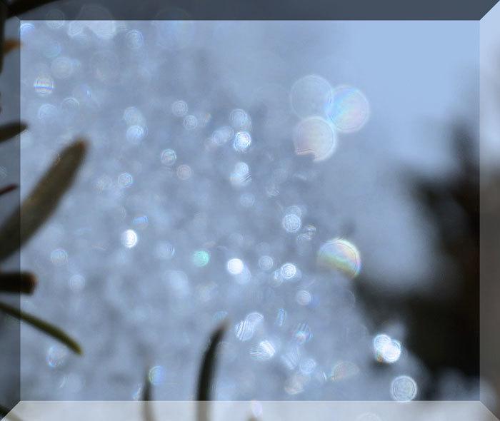 氷の模様_d0162994_08242283.jpg