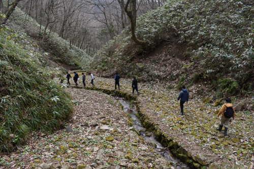 山葵谷を歩いた。_d0087595_16481727.jpeg