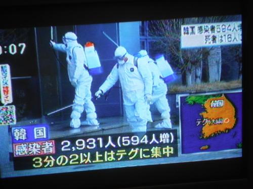 韓国アシアナ、日本便欠航へ 入国制限で就航以来初_b0398201_00394921.jpg