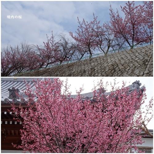 根川緑道をウォーキングし、国宝のあるお寺へ_c0051105_01135761.jpg
