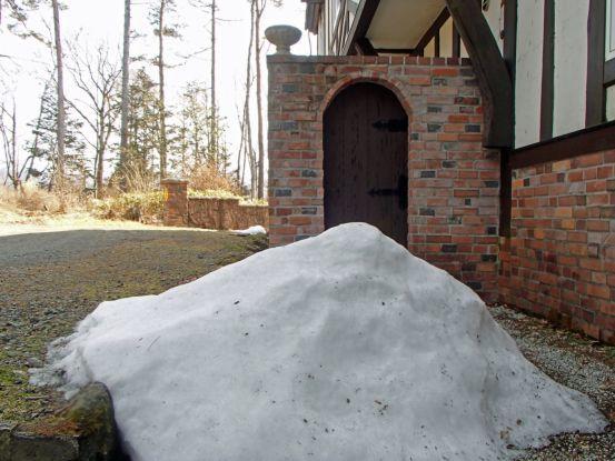 とうとう雪がなかった2月_f0064906_11091676.jpg
