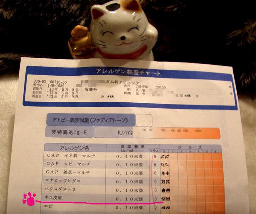 猫アレルギー検査_a0329820_11395589.jpg