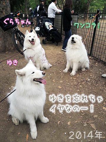 下ふ北沢にて_c0062832_17572616.jpg