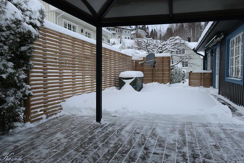 雪_a0353839_20193183.jpg