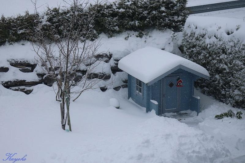 雪_a0353839_20214080.jpg
