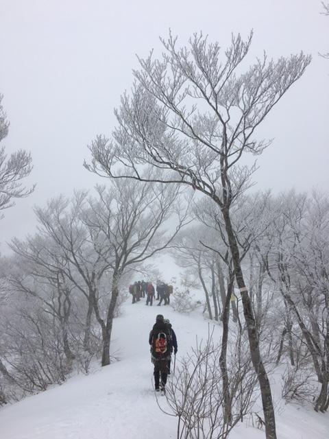 愛知山岳連盟 雪上技術検定_a0067744_18340741.jpg