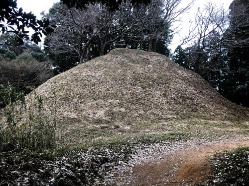 白米城(松阪市)_e0292546_00432048.jpg