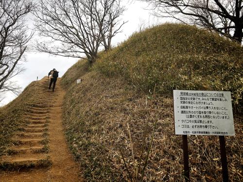 白米城(松阪市)_e0292546_00435023.jpg