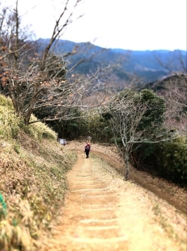 白米城(松阪市)_e0292546_00441016.jpg