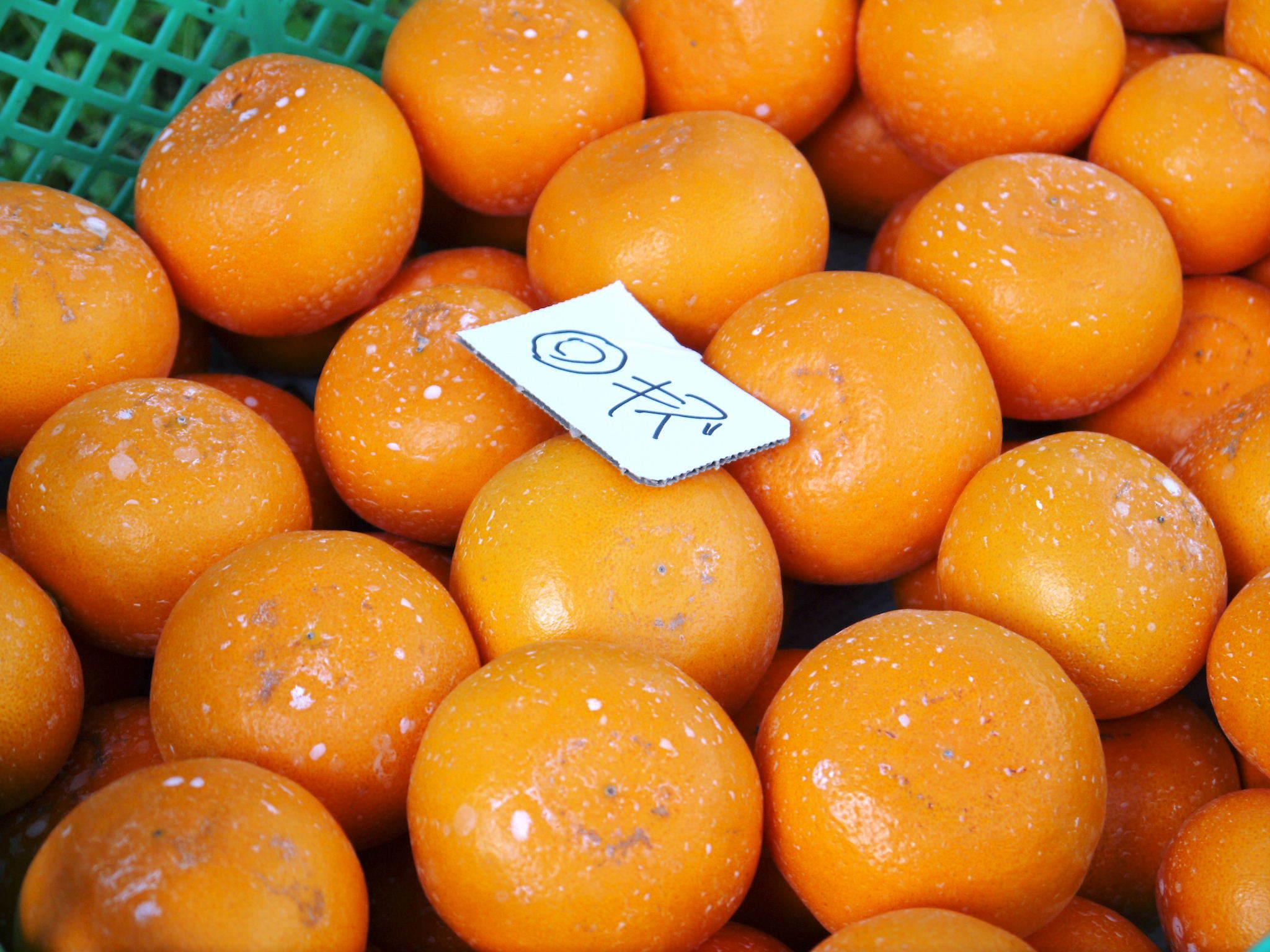 究極の柑橘『せとか』 超!ハイペースで出荷中!ご家庭用にもご贈答用にも大人気商品です!_a0254656_14574343.jpg