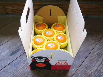 究極の柑橘『せとか』 超!ハイペースで出荷中!ご家庭用にもご贈答用にも大人気商品です!_a0254656_15302745.jpg