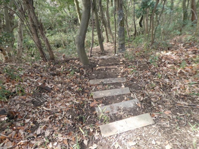 シュンランの道階段補修・・・うみべの森_c0108460_17122607.jpg