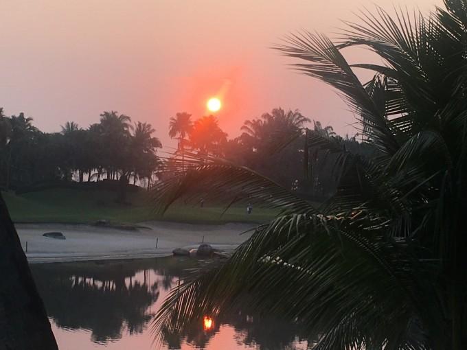 ビオトープのあるALPINEゴルフクラブ_b0100062_11271407.jpeg