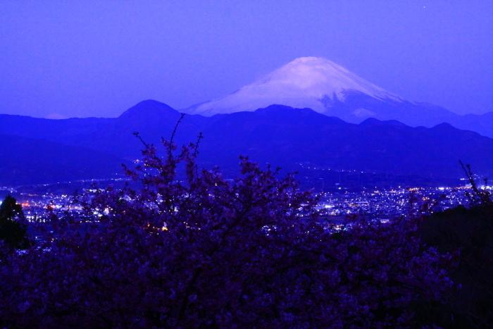 令和2年2月の富士 (22) おおいゆめの里の夜明けの富士_e0344396_12350515.jpg