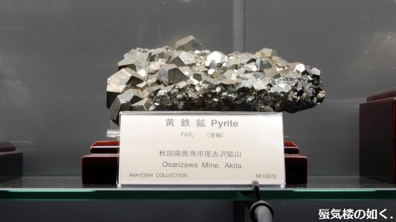 「恋する小惑星」舞台探訪004-1/3 第4話 つくば駅周辺、そして地質標本館へ_e0304702_18580486.jpg