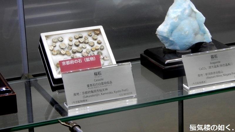 「恋する小惑星」舞台探訪004-1/3 第4話 つくば駅周辺、そして地質標本館へ_e0304702_18594986.jpg