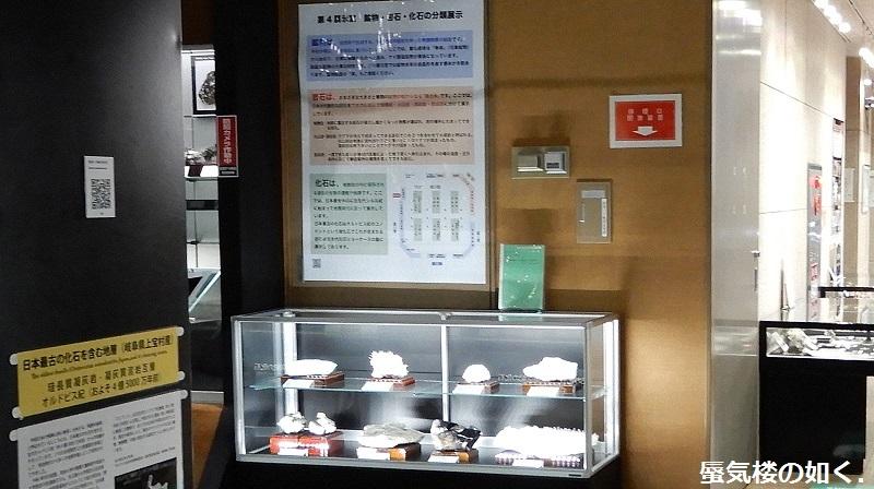 「恋する小惑星」舞台探訪004-1/3 第4話 つくば駅周辺、そして地質標本館へ_e0304702_19015412.jpg