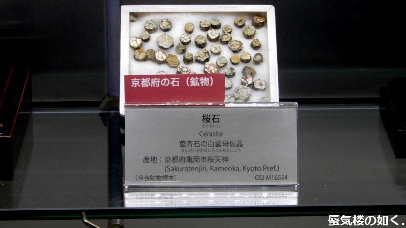 「恋する小惑星」舞台探訪004-1/3 第4話 つくば駅周辺、そして地質標本館へ_e0304702_19185979.jpg