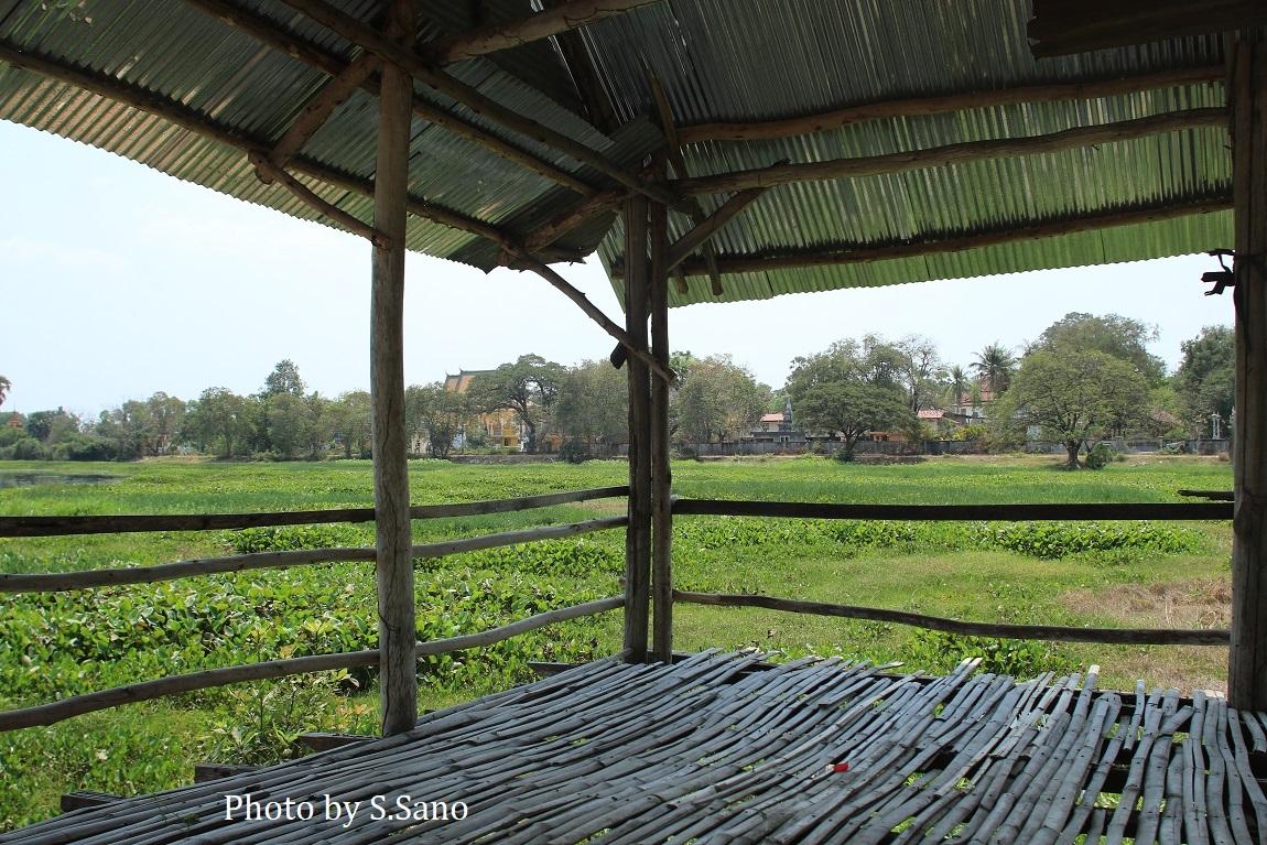 カンボジアの旅(2020年2月)~その3~_b0348205_23211353.jpg