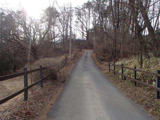 午後散歩コースを_f0064906_15265243.jpg