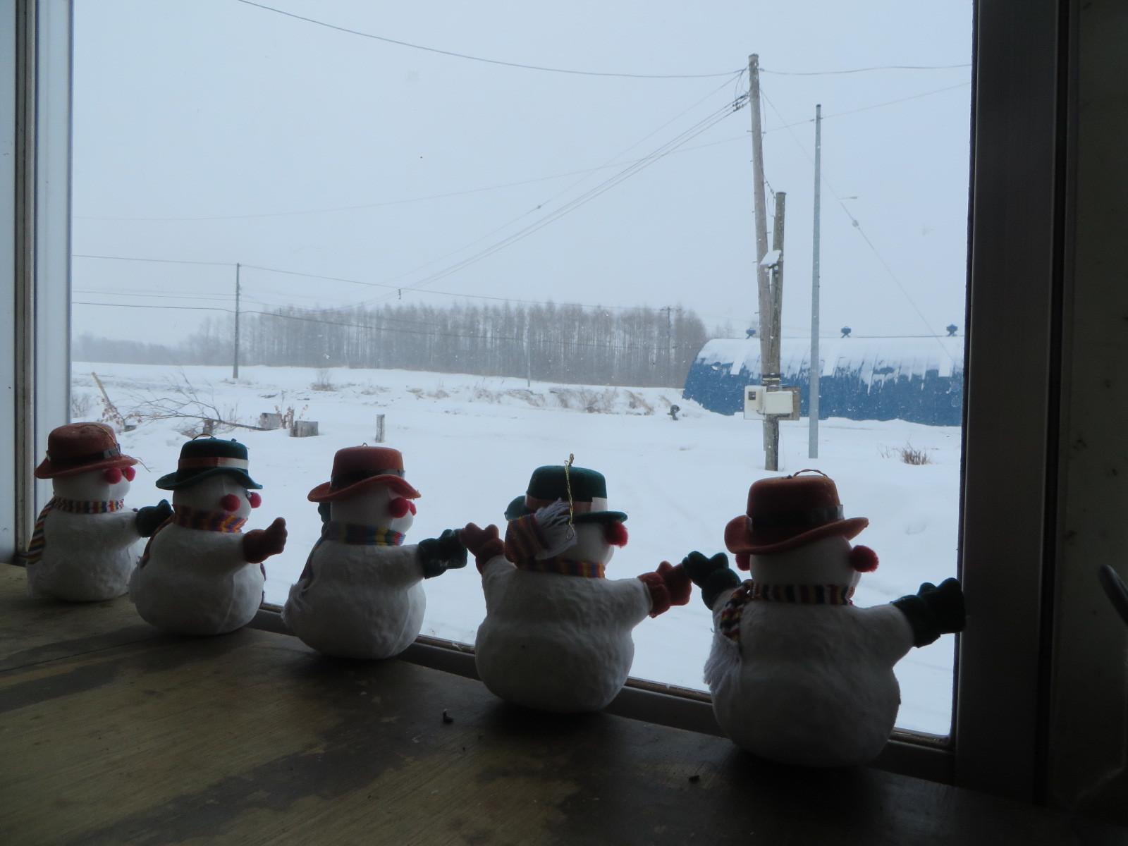 予報通り、明け方から午後まで雪が降った一日_b0405523_11260030.jpg