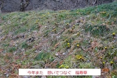 春まだ早いハイキング(県民の森)_e0265627_13274122.jpg