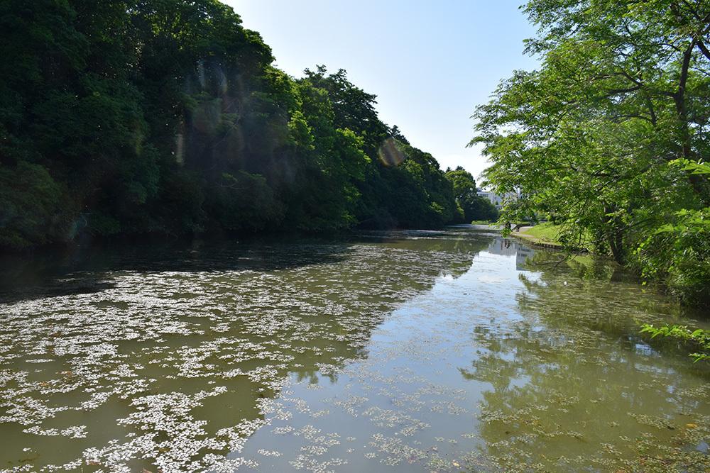 丹波亀山城を歩く。 その1 <大本・天恩郷>_e0158128_19253562.jpg