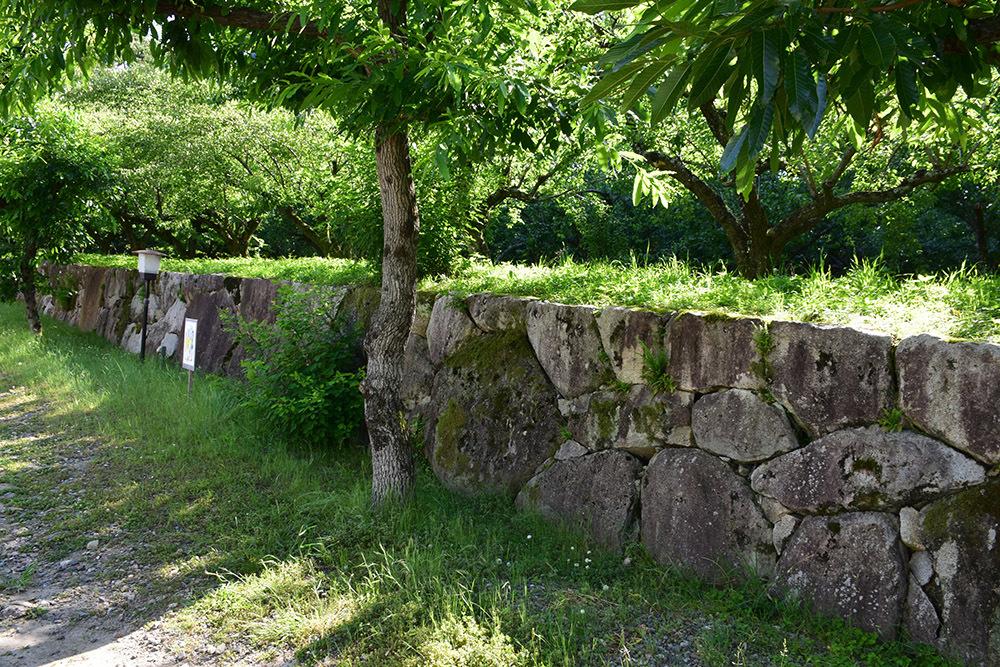 丹波亀山城を歩く。 その1 <大本・天恩郷>_e0158128_19312876.jpg
